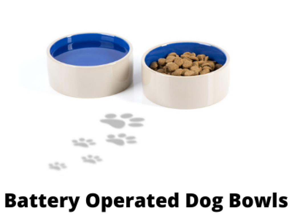 Best Battery Operated Heated Water Bowls