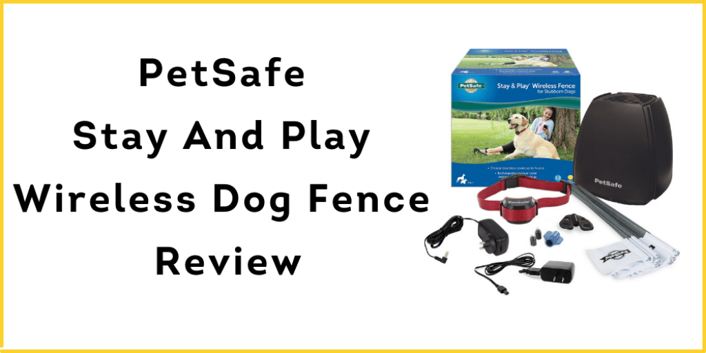 PetSafe Stay And Play Wireless Dog Fence Review